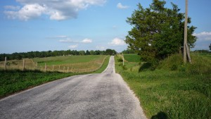 The road to the RV park.