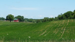 Indiana is pretty, but it get a little repetitive after a while (though I do like this picture).