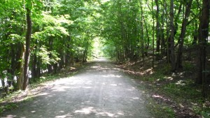 The Montour Trail. The GAP looked very similar as well.
